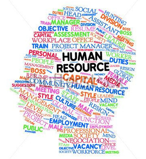 HR Management Software Services